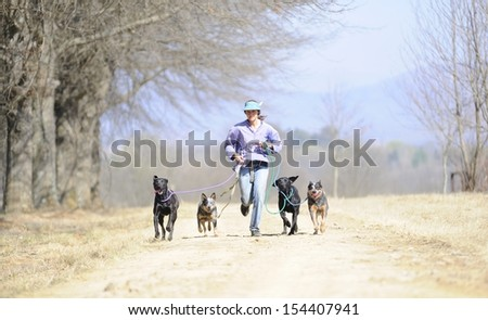 Running with the pack.  Dog trainer exercises with  Australian Cattle dogs and Ridgebacks. Kwazulu Natal, South Africa