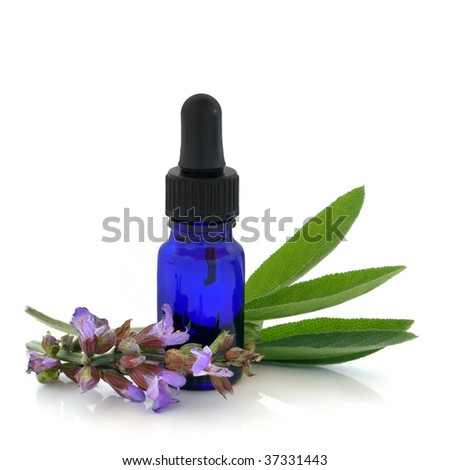 Sage herb flowers and leaves with an aromatherapy essential oil dropper bottle, over white background. - stock photo