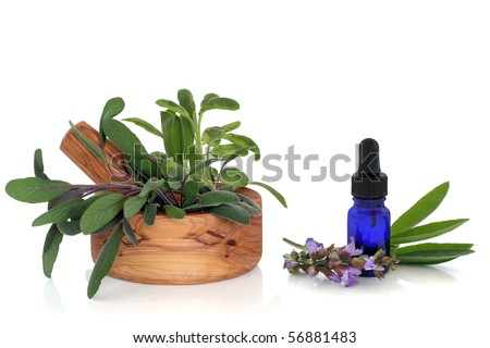 Sage herb leaf sprigs in an olive wood mortar with pestle and aromatherapy blue glass dropper bottle with sage flowers, isolated over white background with reflection. - stock photo