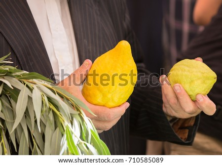 etrog sale ritual plants on traditional stock photo 714298036