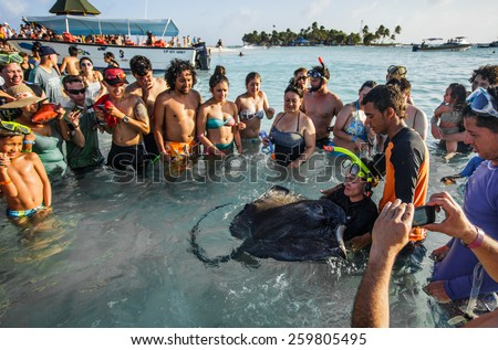 - San Andres, Colombia, January 10th 2014. San Andres is a coral island in the Caribbean Sea. Some tourists all around a big Stingray are touching it one after the other. - stock photo