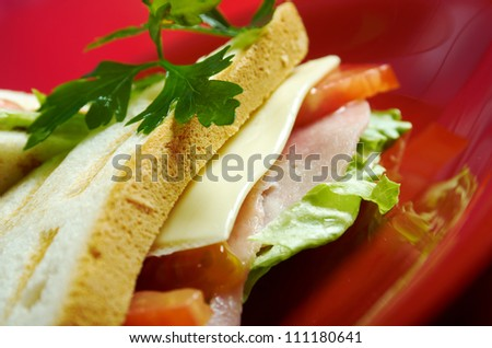 sandwiches with cheese and ham .Studio