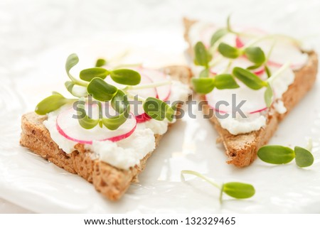 sandwiches with radish and sunflower sprouts - stock photo