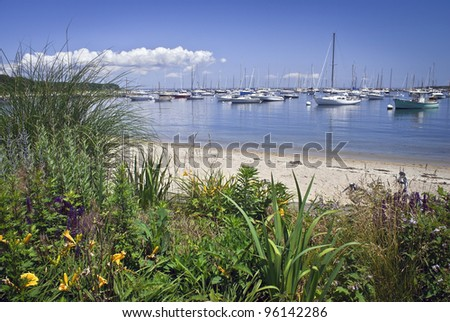 """Seaport View Martha's Vineyard"" A garden view of a marina on Martha's Vineyard on a nice Summer day. - stock photo"