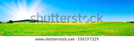 Serene summer meadow and wonderful blue sky. - stock photo