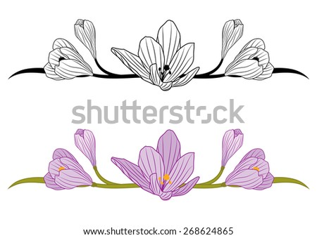 set of borders with flowers of crocus - stock photo