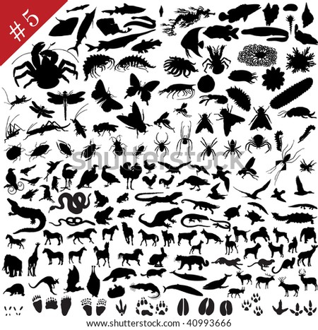 # 5 set of  different animals, birds, insects and fishes   silhouettes