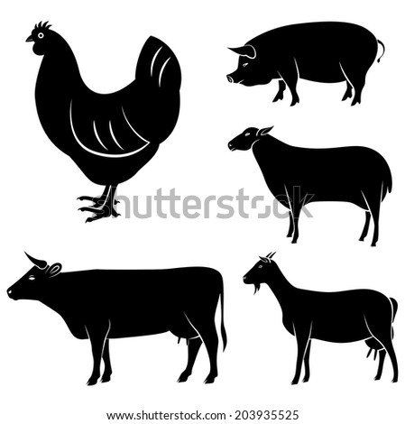set of farm animals chicken, cow, sheep, goat, pig - stock photo