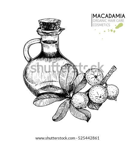 Vector Illustration Essential Oil Neroli Style Stock Vector 472283038 - Shutterstock