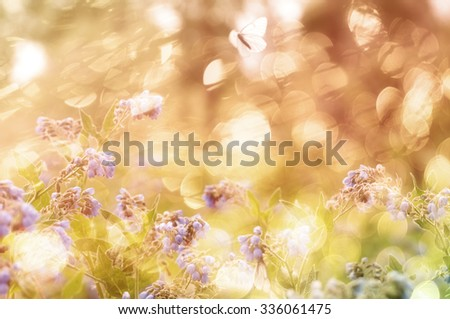 Shining natural background with field flowers and butterfly in solar glare double exposure. - stock photo