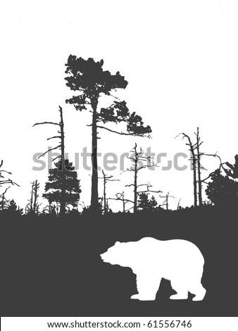 silhouette bear on background wild wood - stock photo