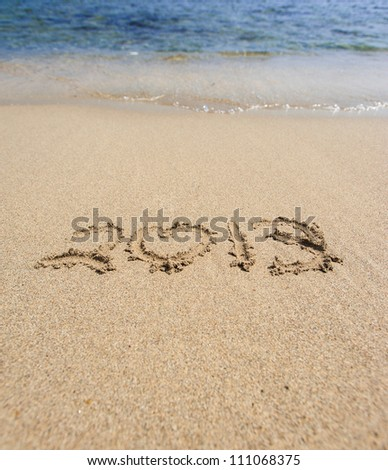 2013 sing on the sand - stock photo