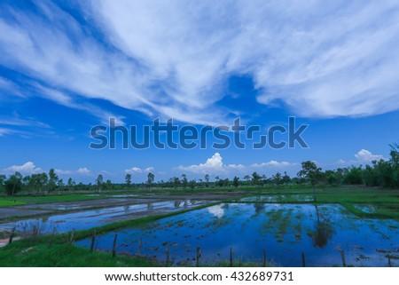 sky , clouds , Landscape , Backgrounds - stock photo