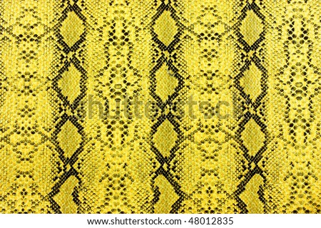 snake skin yellow - stock photo