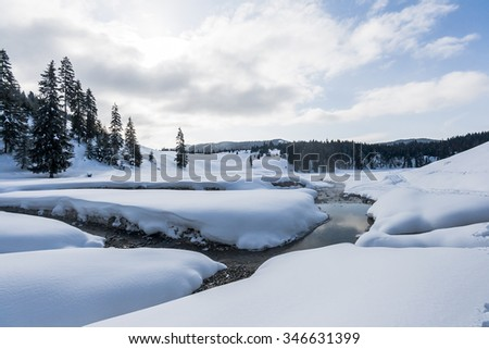 Snow-covered winter mountain landscape with pine-forest and stream crossing