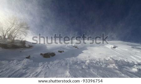Snowstorm - stock photo
