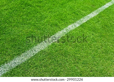 Soccer grass and white lines - stock photo
