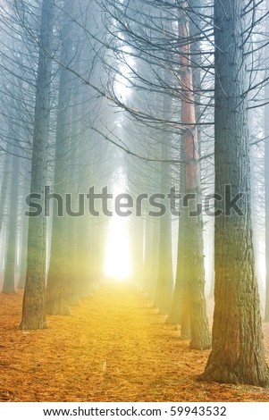 sparkle light in the end of tunnel - stock photo