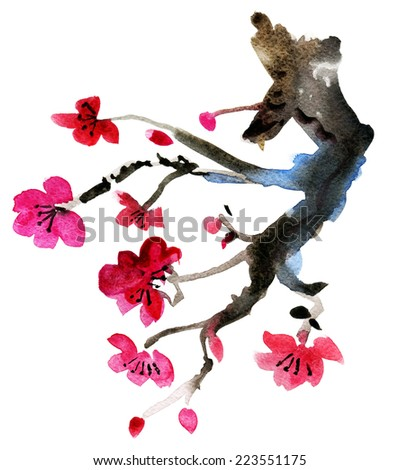 Spring flowering branches, pink flowers, no leaves, blossoms  isolated on white background. Watercolor illustration. - stock photo