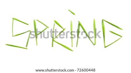 """Spring"" word whitten by grass blades - stock photo"