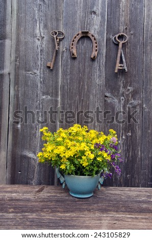 st Johns wort medical flowers in vase and antique rusty horseshoe with key on farm barn wall - stock photo