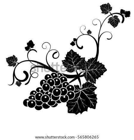 Vine Leaves Drawing Black White Stock Illustration