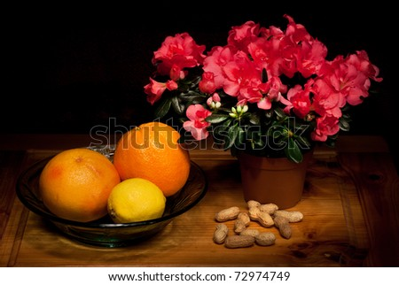 Still life with flowers, fruit and nuts - stock photo