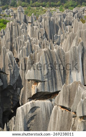 Stone forest national park in Yunnan province, China   - stock photo