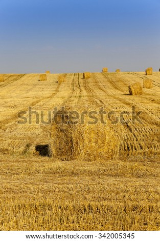 straw bales stacked in during the harvest of cereals - stock photo