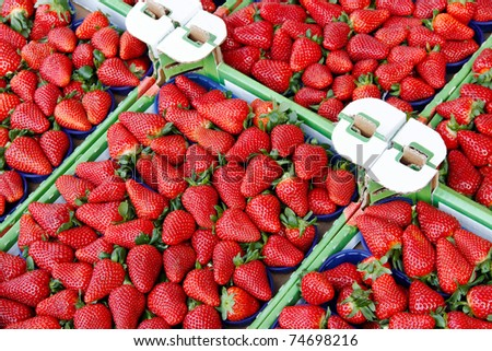 Strawberries in boxes. - stock photo