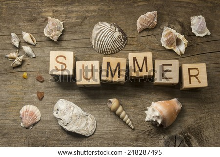 summer text on wooden background - stock photo