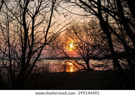 Sunset and tree silhouette in the forest lake - stock photo
