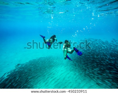 swimming with turtles and schools of fish - Westpunt Curacao