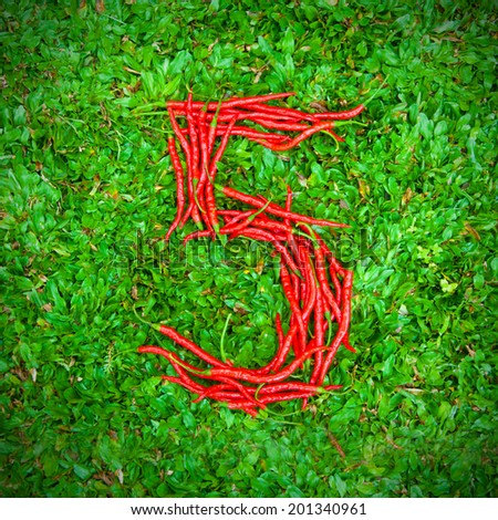 """""""5"""" symbol shaped group of red chili peppers on the green grass - stock photo"""