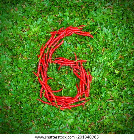 """""""6"""" symbol shaped group of red chili peppers on the green grass - stock photo"""