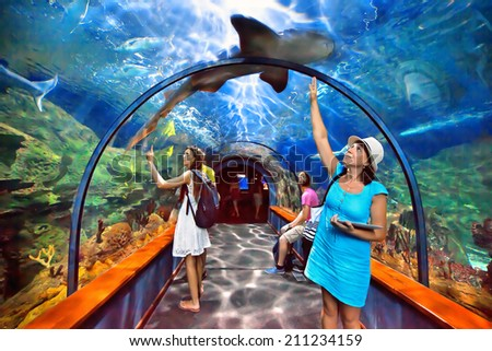 TENERIFE, SPAIN - JULY 15: Aquatic tunnel in the Loro parque aquarium on july 15, 2014 in Tenerife, Spain. This aquarium consists of twelve themed exhibits in a total of 1,200,000 litres of seawater. - stock photo