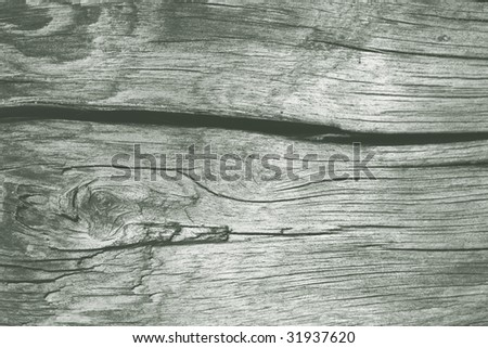 texture of an old weather-beaten wood, macro