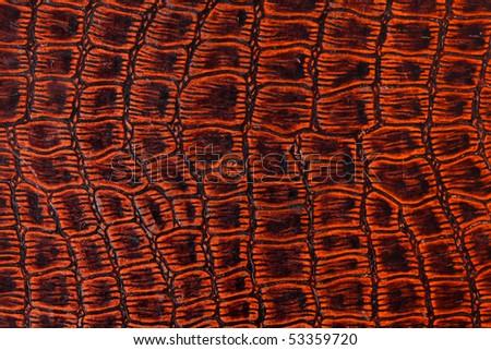 texture of crocodile skin - stock photo
