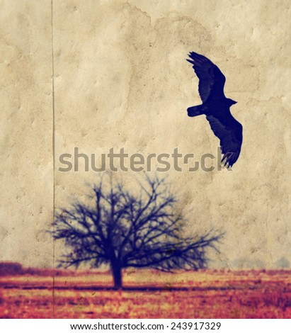textured background with raven bird and bare twisted tree branches silhouette toned with a retro vintage instagram filter (grainy image)
