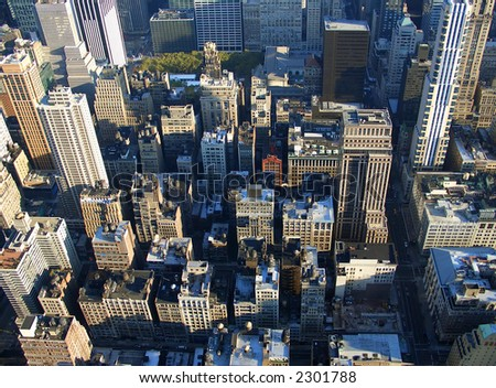 5th avenue and Bryant Park seen from Empire State building in the morning, Manhattan, New York