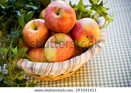the apple basket - stock photo