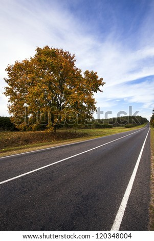 the asphalted road to an autumn season. Belarus