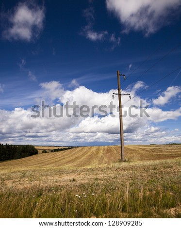 the electric columns standing on an agricultural field