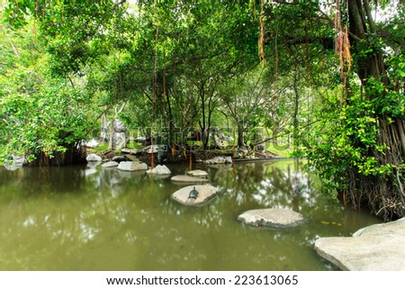 The Lush Green Park canal water. - stock photo