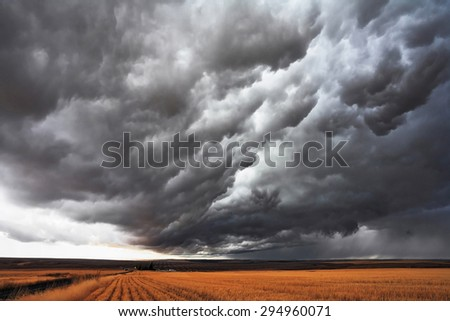 The massive storm cloud covered the sky. The harvest in the fields of Montana - stock photo