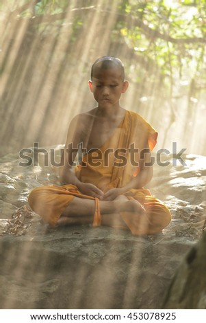 The meditation novices in forest