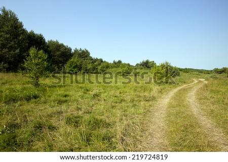 the rural not asphalted road which is passing across the field - stock photo