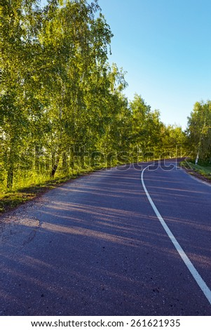 the small asphalted road which is in rural areas. Belarus - stock photo