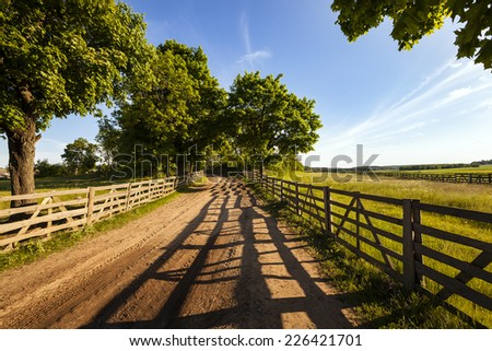 the wooden fence which is fencing off the road and a field. Belarus - stock photo