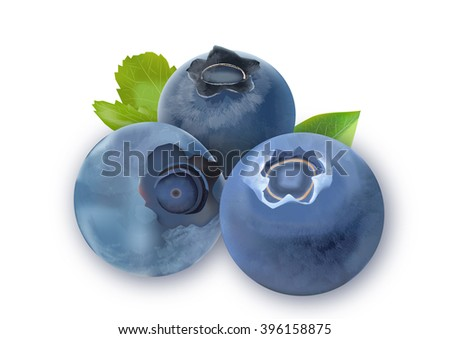 Three blueberries with green leaves on white background